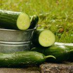 7 powodów dla których warto jeść ogórki
